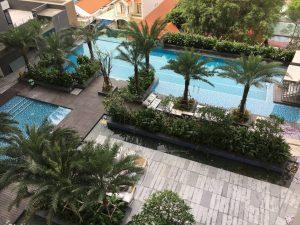 Swimming pool above view